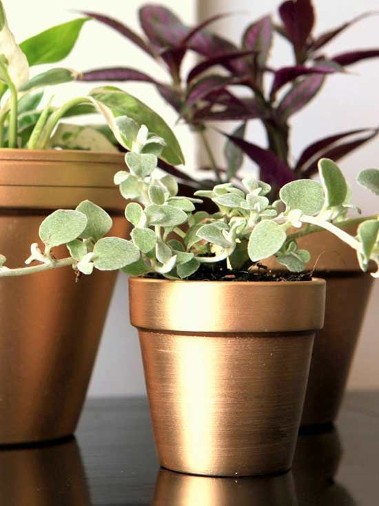 Adding shine to basic plant pots can be done in a flash with a simple can of gol...