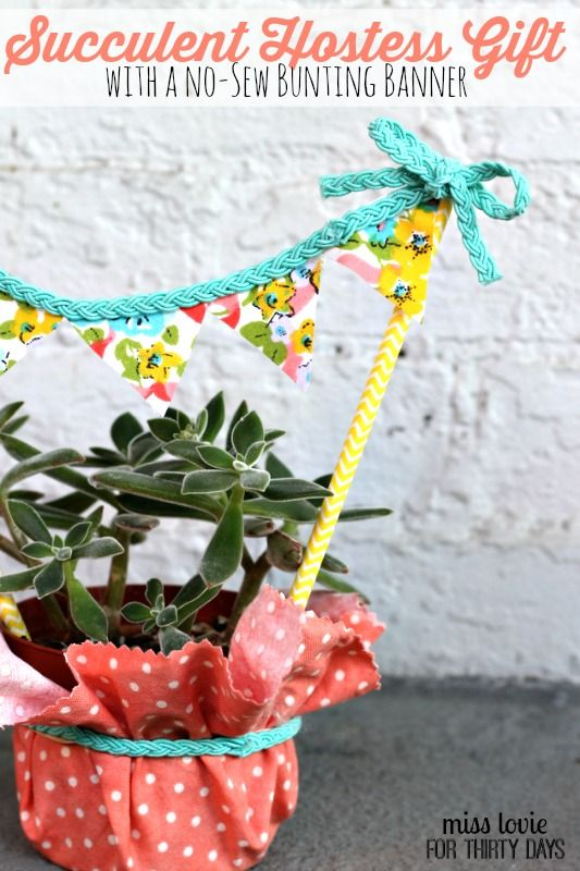Succulent Hostess Gift and No-Sew Banner from Allie of Miss Lovie. Super cute an...