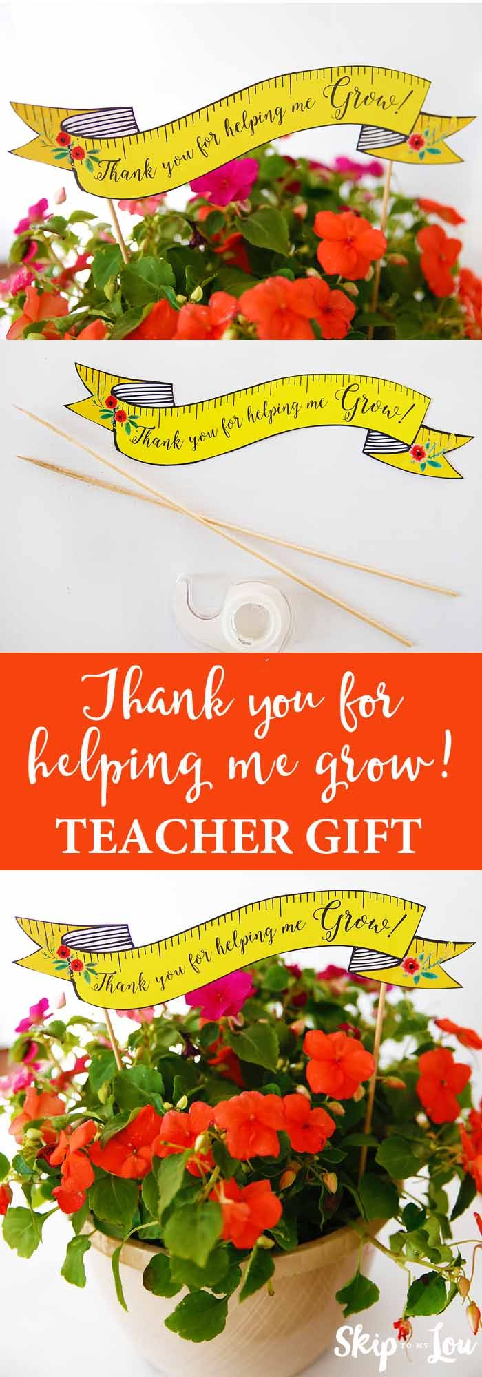 photograph regarding Thanks for Helping Me Grow Free Printable referred to as Do-it-yourself Items : Instructor appreciation present notion! No cost printable